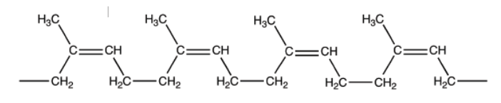 Portion of a macromolecule of cis-1,4-polyisoprene