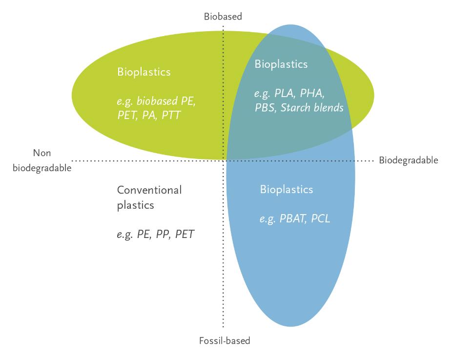 Bioplastiche cosa sono. Questa immagine ha lo scopo di illustrare graficamente l'intero mondo della bioplastiche.