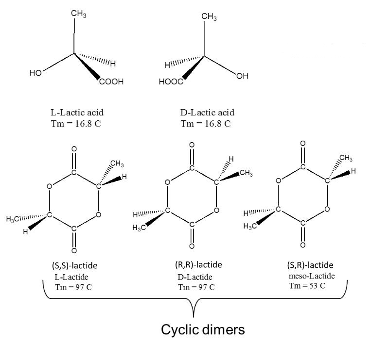 Lactic acid for the production of polylactic acid